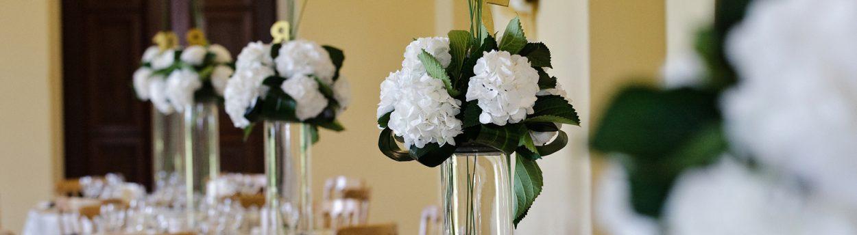 Three flowers in vases