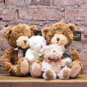 Teddy Bear Selection